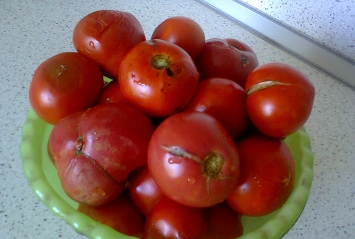 Η μέθοδος της κατάψυξης ντομάτας