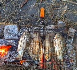 Gătit pește de râu în miza - crapul crocant prăjit care linge degetele