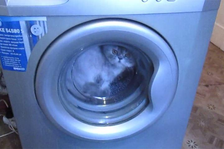 В пералнята е попаднал чужд предмет - как да го вземем?