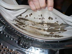 אמצעים לניקוי מכונת הכביסה מעובש